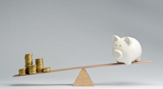 Kosten eines Magento Shops<br><span>Enterprise-Edition mit Kostenaufwand</span>